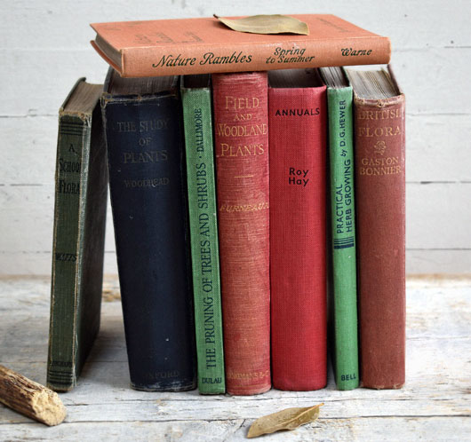 Lot of antique period books on gardening and flora