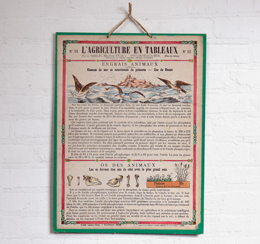 Antique French agriculture wall chart: Animal Fertilisers