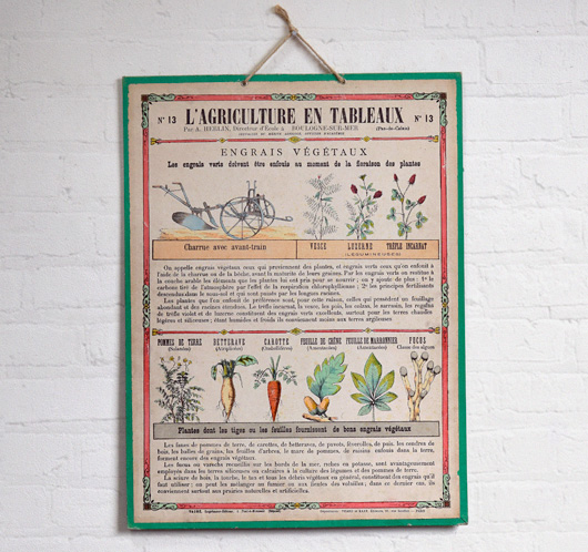 Antique French agriculture wall chart: Vegetable Fertilisers