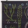 Large mid-century plant biology wall scroll chart