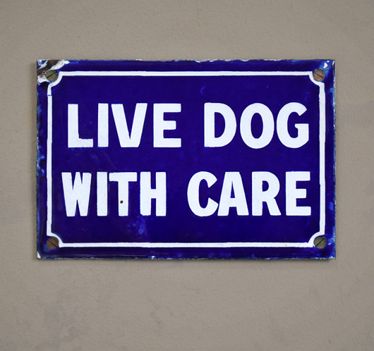 Antique enamel sign: Live Dog With Care